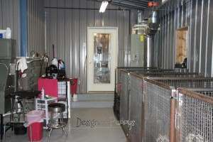 Interior of dog kennel